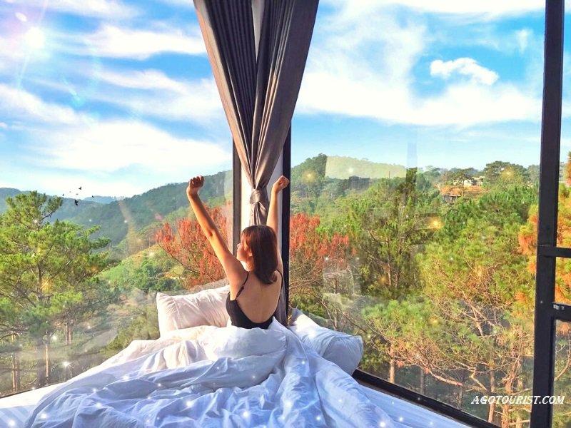 Homestay view nhà kính ngắm đồi thông Đà Lạt